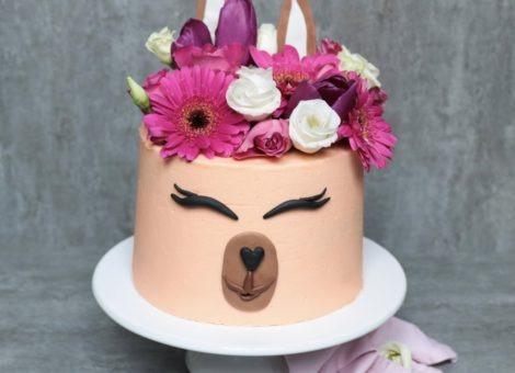 No Drama Llama, Kuchen ist für alle da!
